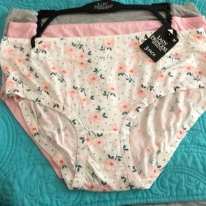 Lady Princess Intimates & Sleepwear - NWT Lady Princess 3 Pack plus size SO SOFT panties
